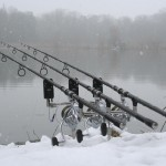 Rods in snow