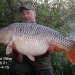steve-miller-56-01