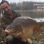 Anthony Briggs 50.00